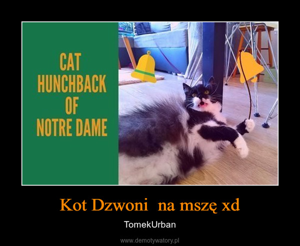 Kot Dzwoni  na mszę xd – TomekUrban