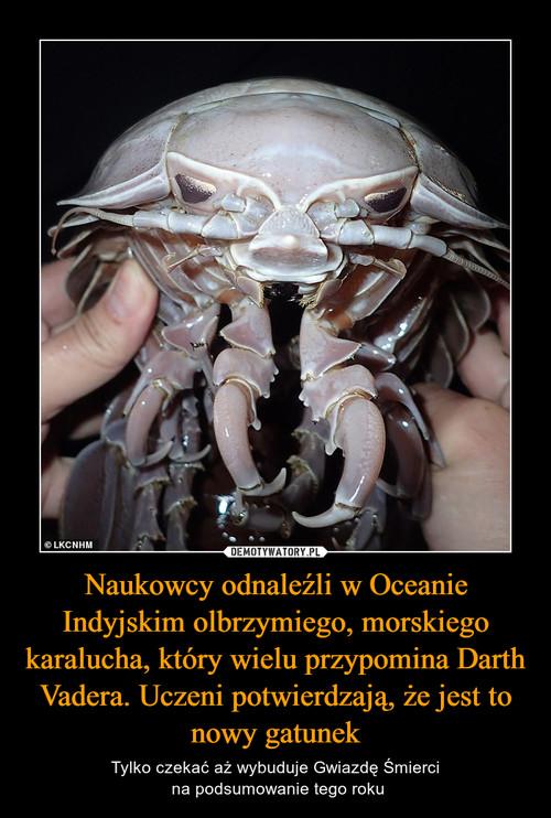 Naukowcy odnaleźli w Oceanie Indyjskim olbrzymiego, morskiego karalucha, który wielu przypomina Darth Vadera. Uczeni potwierdzają, że jest to nowy gatunek