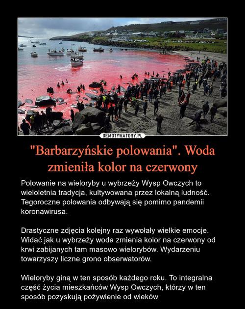 """""""Barbarzyńskie polowania"""". Woda zmieniła kolor na czerwony"""