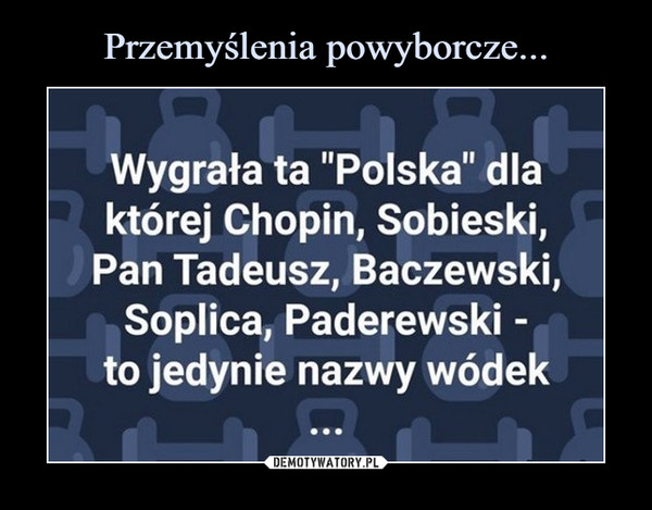 """–  Wygrała ta """"Polska"""" dlaktórej Chopin, Sobieski,Pan Tadeusz, Baczewski,Soplica, Paderewski -to jedynie nazwy wódek"""