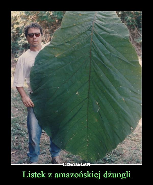 Listek z amazońskiej dżungli –