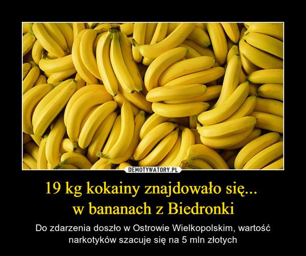 19 kg kokainy znajdowało się... w bananach z Biedronki – Do zdarzenia doszło w Ostrowie Wielkopolskim, wartość narkotyków szacuje się na 5 mln złotych