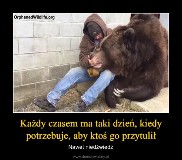 Każdy czasem ma taki dzień, kiedy potrzebuje, aby ktoś go przytulił – Nawet niedźwiedź
