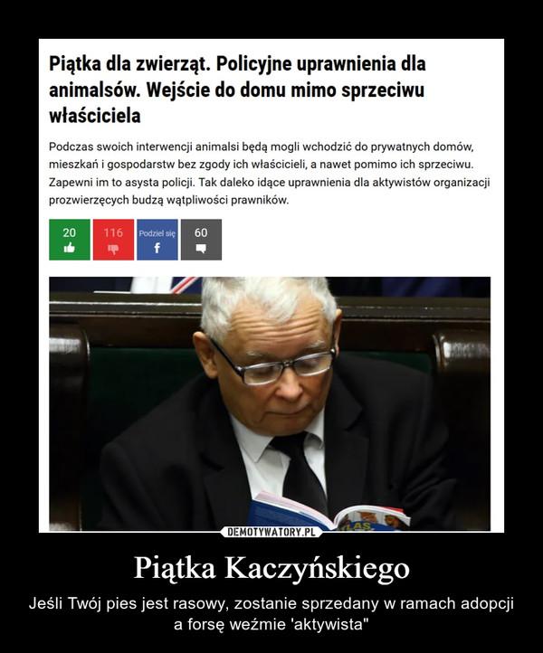 """Piątka Kaczyńskiego – Jeśli Twój pies jest rasowy, zostanie sprzedany w ramach adopcji a forsę weźmie 'aktywista"""""""