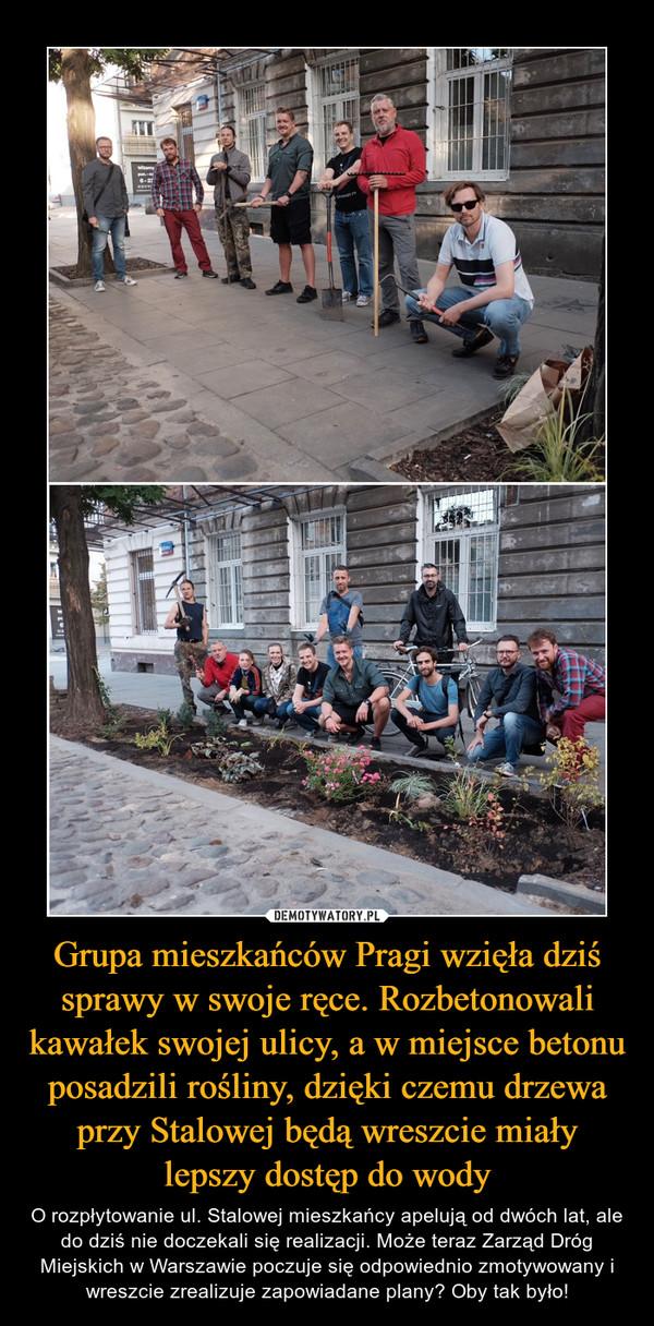 Grupa mieszkańców Pragi wzięła dziś sprawy w swoje ręce. Rozbetonowali kawałek swojej ulicy, a w miejsce betonu posadzili rośliny, dzięki czemu drzewa przy Stalowej będą wreszcie miały lepszy dostęp do wody – O rozpłytowanie ul. Stalowej mieszkańcy apelują od dwóch lat, ale do dziś nie doczekali się realizacji. Może teraz Zarząd Dróg Miejskich w Warszawie poczuje się odpowiednio zmotywowany i wreszcie zrealizuje zapowiadane plany? Oby tak było!