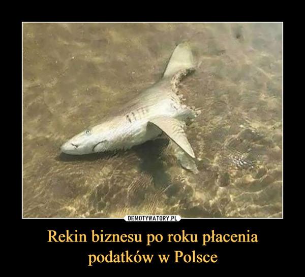 Rekin biznesu po roku płacenia podatków w Polsce –