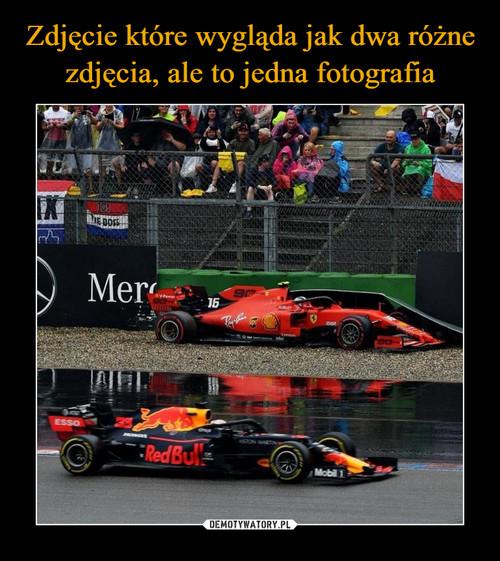 Zdjęcie które wygląda jak dwa różne zdjęcia, ale to jedna fotografia