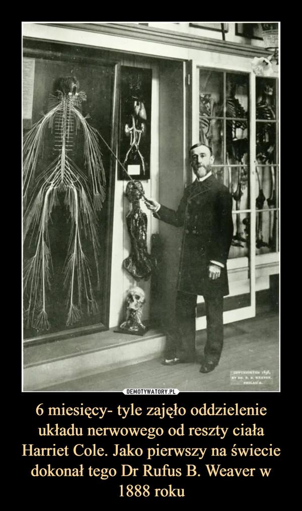 6 miesięcy- tyle zajęło oddzielenie układu nerwowego od reszty ciała Harriet Cole. Jako pierwszy na świecie dokonał tego Dr Rufus B. Weaver w 1888 roku –