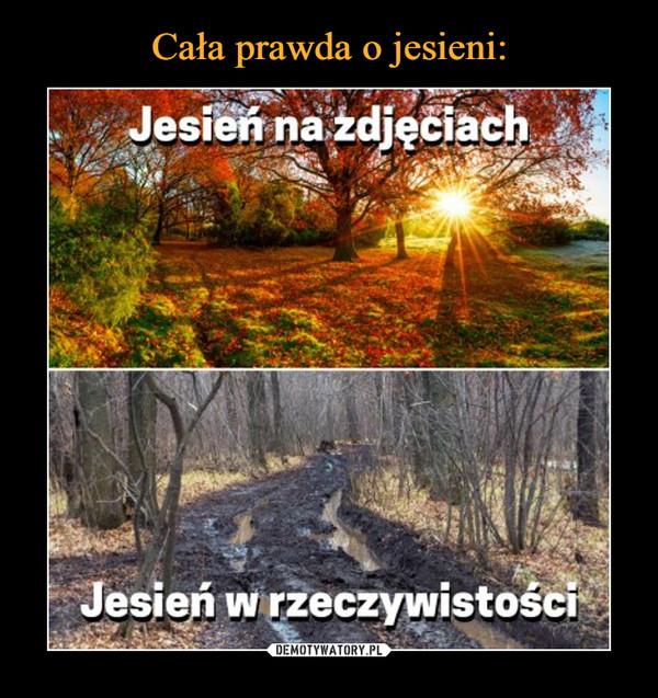 –  Jesień na zdjęciachJesień w rzeczywistości