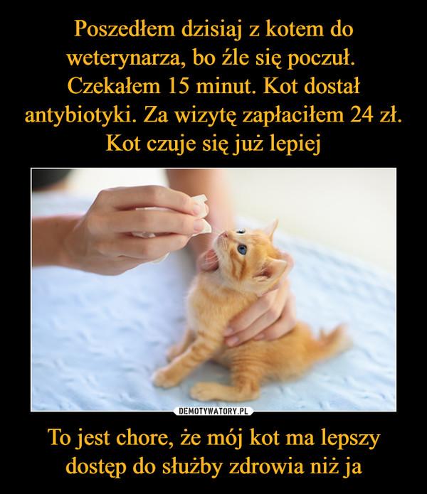 To jest chore, że mój kot ma lepszy dostęp do służby zdrowia niż ja –