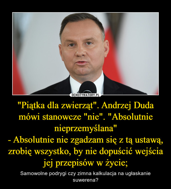 """""""Piątka dla zwierząt"""". Andrzej Duda mówi stanowcze """"nie"""". """"Absolutnie nieprzemyślana""""- Absolutnie nie zgadzam się z tą ustawą, zrobię wszystko, by nie dopuścić wejścia jej przepisów w życie; – Samowolne podrygi czy zimna kalkulacja na ugłaskanie suwerena?"""