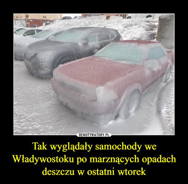 Tak wyglądały samochody we Władywostoku po marznących opadach deszczu w ostatni wtorek –