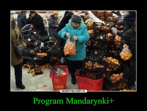 Program Mandarynki+