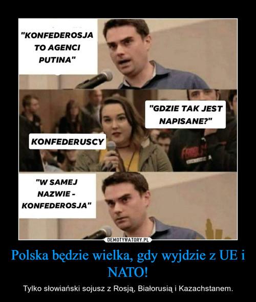 Polska będzie wielka, gdy wyjdzie z UE i NATO!