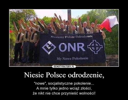 Niesie Polsce odrodzenie,