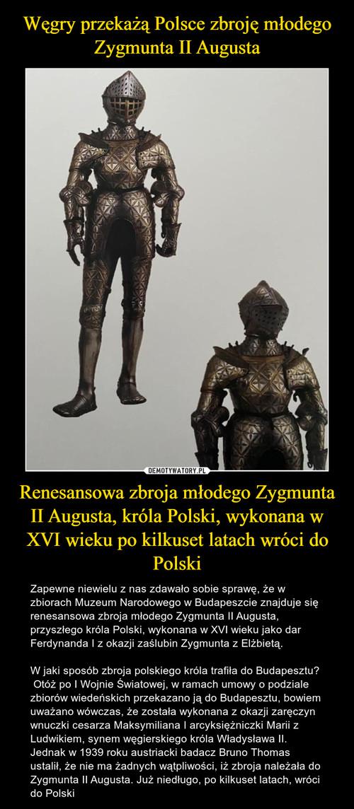 Węgry przekażą Polsce zbroję młodego Zygmunta II Augusta Renesansowa zbroja młodego Zygmunta II Augusta, króla Polski, wykonana w XVI wieku po kilkuset latach wróci do Polski