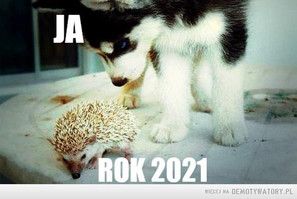 Podejście do 2021 r. –