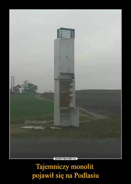 Tajemniczy monolit  pojawił się na Podlasiu