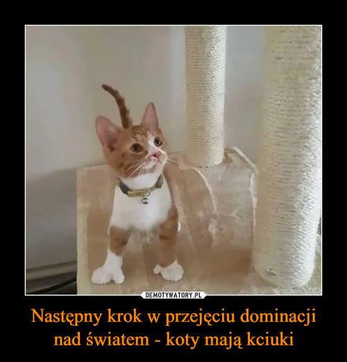 Następny krok w przejęciu dominacji nad światem - koty mają kciuki