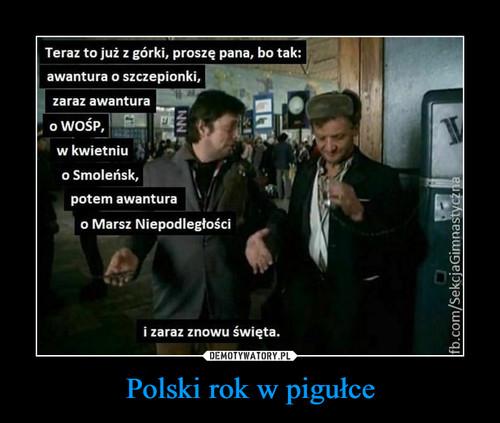 Polski rok w pigułce