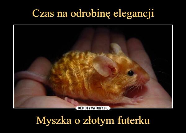 Myszka o złotym futerku –