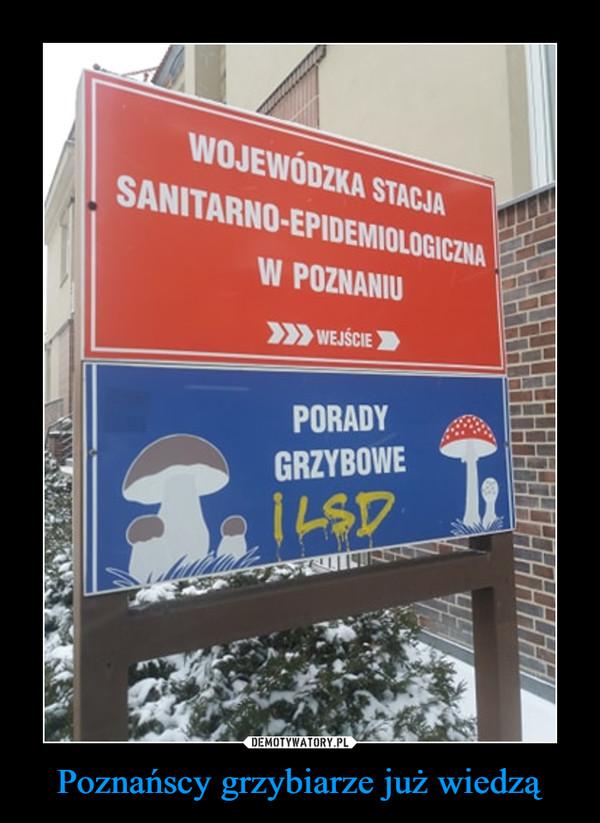 Poznańscy grzybiarze już wiedzą –