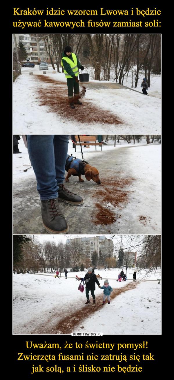 Uważam, że to świetny pomysł! Zwierzęta fusami nie zatrują się tak jak solą, a i ślisko nie będzie –