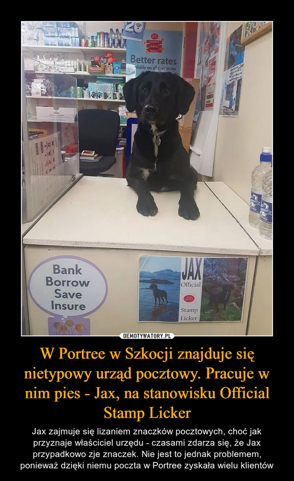 W Portree w Szkocji znajduje się nietypowy urząd pocztowy. Pracuje w nim pies - Jax, na stanowisku Official Stamp Licker – Jax zajmuje się lizaniem znaczków pocztowych, choć jak przyznaje właściciel urzędu - czasami zdarza się, że Jax przypadkowo zje znaczek. Nie jest to jednak problemem, ponieważ dzięki niemu poczta w Portree zyskała wielu klientów