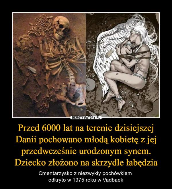 Przed 6000 lat na terenie dzisiejszej Danii pochowano młodą kobietę z jej przedwcześnie urodzonym synem. Dziecko złożono na skrzydle łabędzia – Cmentarzysko z niezwykły pochówkiem odkryto w 1975 roku w Vadbaek