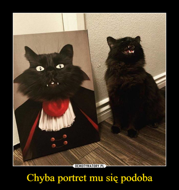 Chyba portret mu się podoba –