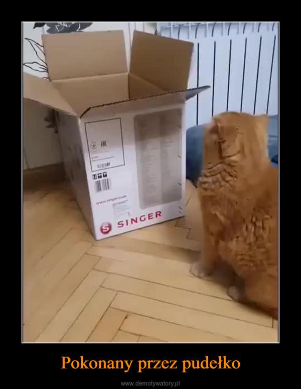 Pokonany przez pudełko –