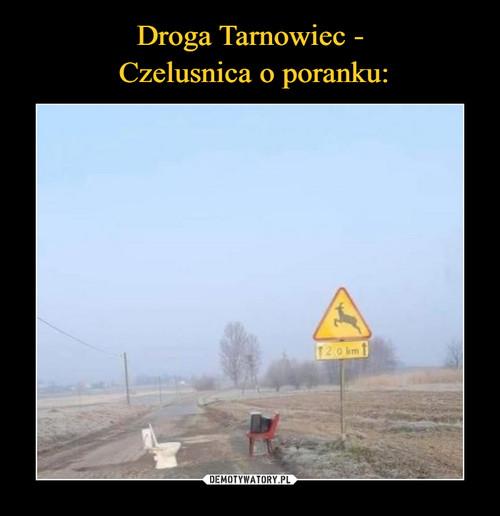 Droga Tarnowiec -  Czelusnica o poranku: