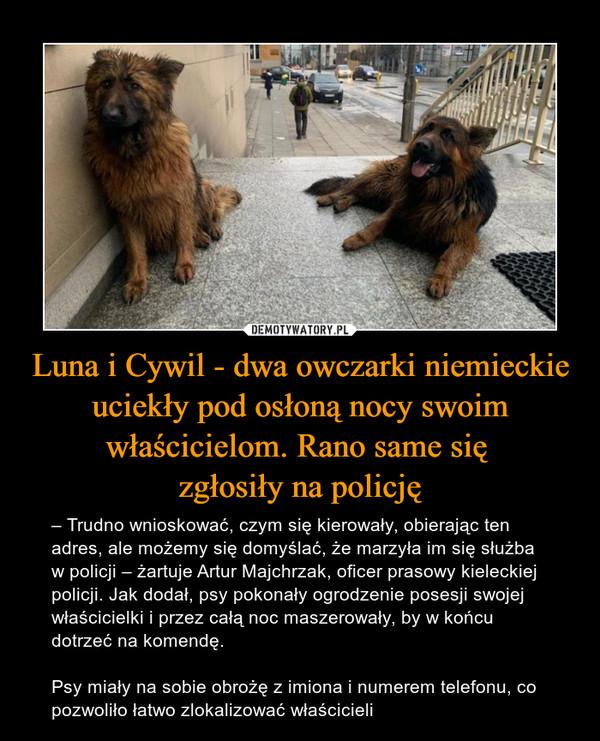 Luna i Cywil - dwa owczarki niemieckie uciekły pod osłoną nocy swoim właścicielom. Rano same się zgłosiły na policję – – Trudno wnioskować, czym się kierowały, obierając ten adres, ale możemy się domyślać, że marzyła im się służba w policji – żartuje Artur Majchrzak, oficer prasowy kieleckiej policji. Jak dodał, psy pokonały ogrodzenie posesji swojej właścicielki i przez całą noc maszerowały, by w końcu dotrzeć na komendę.Psy miały na sobie obrożę z imiona i numerem telefonu, co pozwoliło łatwo zlokalizować właścicieli