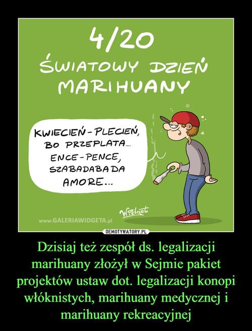 Dzisiaj też zespół ds. legalizacji marihuany złożył w Sejmie pakiet projektów ustaw dot. legalizacji konopi włóknistych, marihuany medycznej i marihuany rekreacyjnej