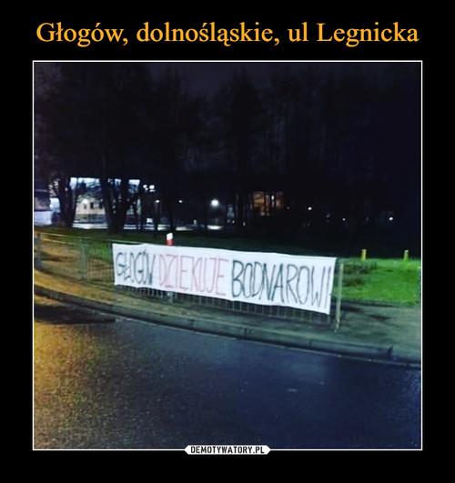 Głogów, dolnośląskie, ul Legnicka