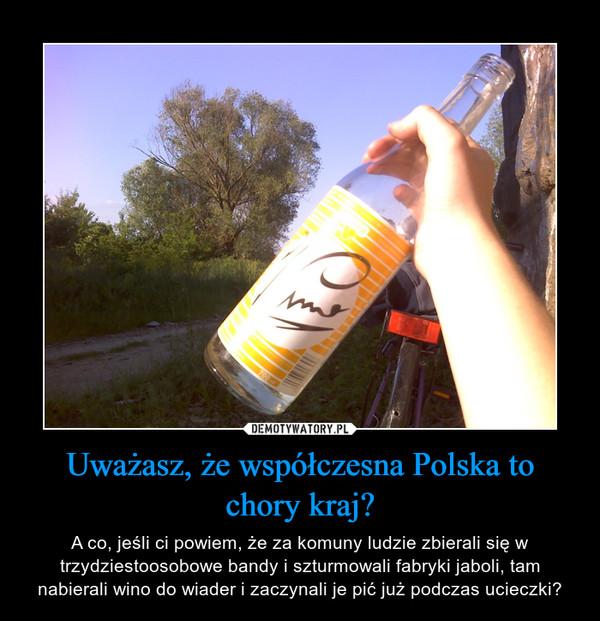 Uważasz, że współczesna Polska to chory kraj? – A co, jeśli ci powiem, że za komuny ludzie zbierali się w trzydziestoosobowe bandy i szturmowali fabryki jaboli, tam nabierali wino do wiader i zaczynali je pić już podczas ucieczki?