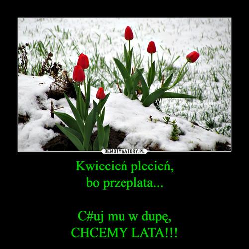Kwiecień plecień, bo przeplata...  C#uj mu w dupę, CHCEMY LATA!!!