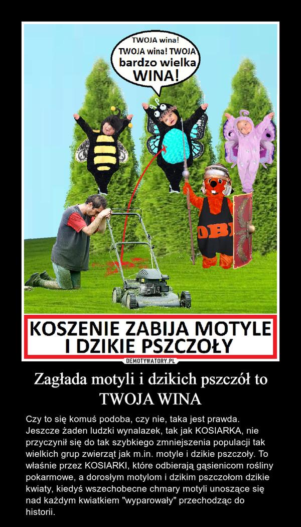 """Zagłada motyli i dzikich pszczół to TWOJA WINA – Czy to się komuś podoba, czy nie, taka jest prawda. Jeszcze żaden ludzki wynalazek, tak jak KOSIARKA, nie przyczynił się do tak szybkiego zmniejszenia populacji tak wielkich grup zwierząt jak m.in. motyle i dzikie pszczoły. To właśnie przez KOSIARKI, które odbierają gąsienicom rośliny pokarmowe, a dorosłym motylom i dzikim pszczołom dzikie kwiaty, kiedyś wszechobecne chmary motyli unoszące się nad każdym kwiatkiem """"wyparowały"""" przechodząc do historii."""