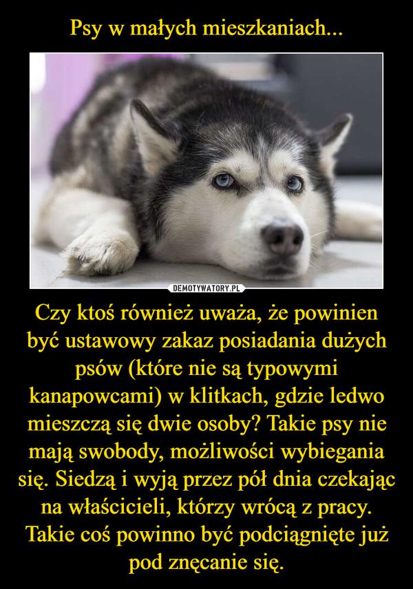 Czy ktoś również uważa, że powinien być ustawowy zakaz posiadania dużych psów (które nie są typowymi kanapowcami) w klitkach, gdzie ledwo mieszczą się dwie osoby? Takie psy nie mają swobody, możliwości wybiegania się. Siedzą i wyją przez pół dnia czekając na właścicieli, którzy wrócą z pracy. Takie coś powinno być podciągnięte już pod znęcanie się. –