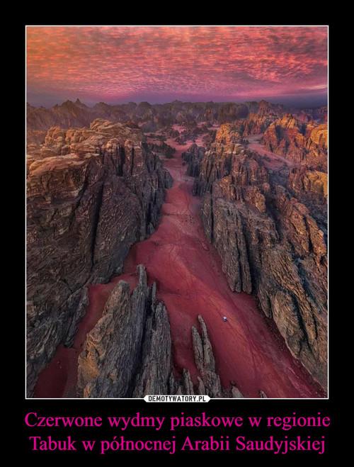 Czerwone wydmy piaskowe w regionie Tabuk w północnej Arabii Saudyjskiej