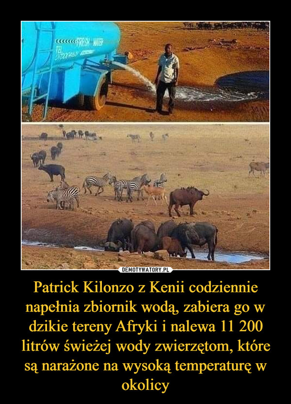 Patrick Kilonzo z Kenii codziennie napełnia zbiornik wodą, zabiera go w dzikie tereny Afryki i nalewa 11 200 litrów świeżej wody zwierzętom, które są narażone na wysoką temperaturę w okolicy –