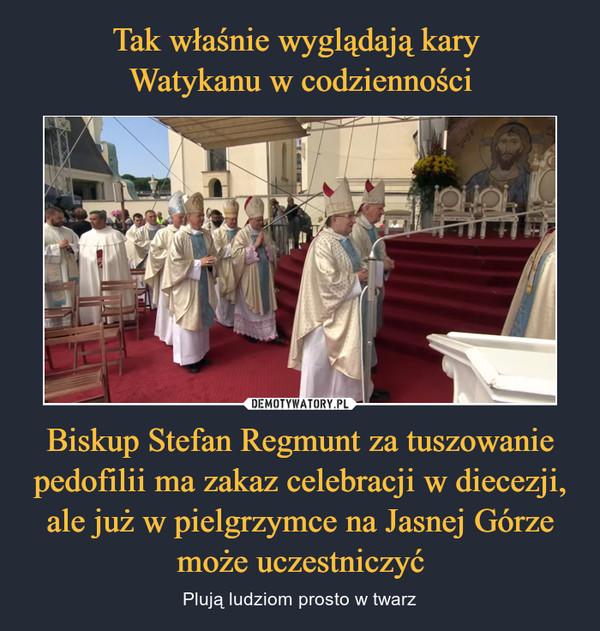 Biskup Stefan Regmunt za tuszowanie pedofilii ma zakaz celebracji w diecezji, ale już w pielgrzymce na Jasnej Górze może uczestniczyć – Plują ludziom prosto w twarz