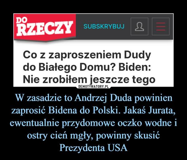 W zasadzie to Andrzej Duda powinien zaprosić Bidena do Polski. Jakaś Jurata, ewentualnie przydomowe oczko wodne i ostry cień mgły, powinny skusić Prezydenta USA –