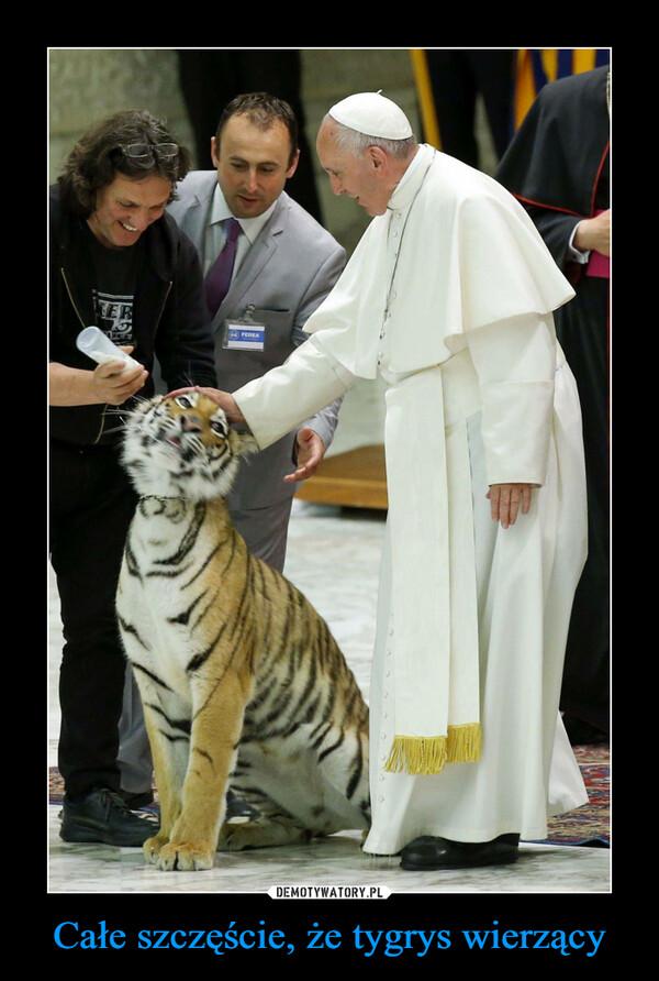 Całe szczęście, że tygrys wierzący