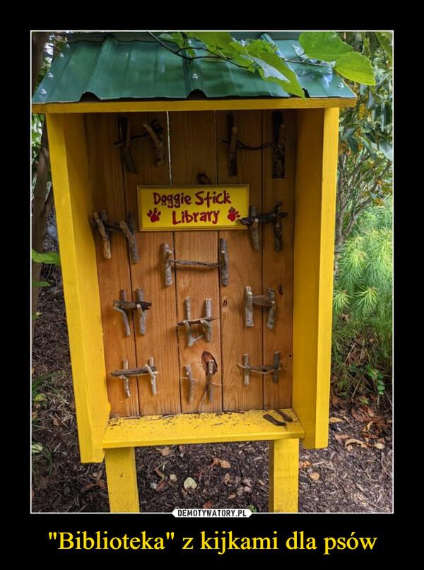 """""""Biblioteka"""" z kijkami dla psów –"""
