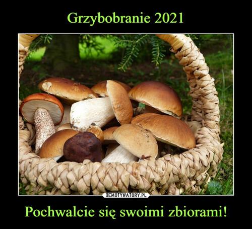 Grzybobranie 2021 Pochwalcie się swoimi zbiorami!