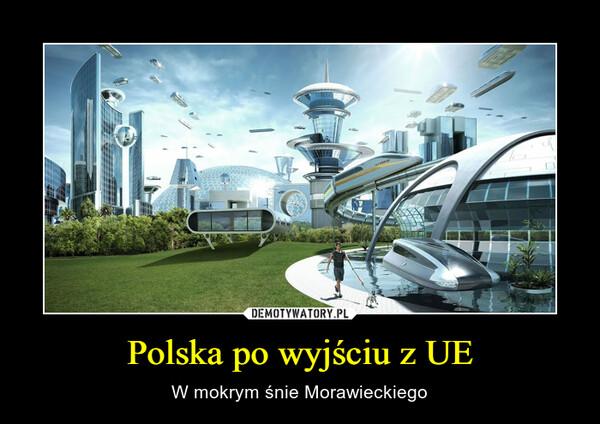 Polska po wyjściu z UE – W mokrym śnie Morawieckiego