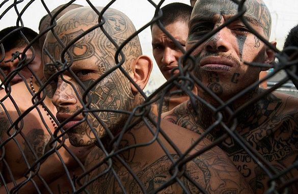 15 Tatuaży Gangów Z Całego świata Oraz Ich Praktyczne