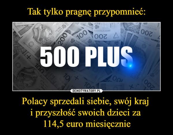 Tak tylko pragnę przypomnieć: Polacy sprzedali siebie, swój kraj i przyszłość swoich dzieci za 114,5 euro miesięcznie